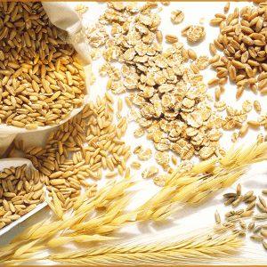 Cereali d'estate